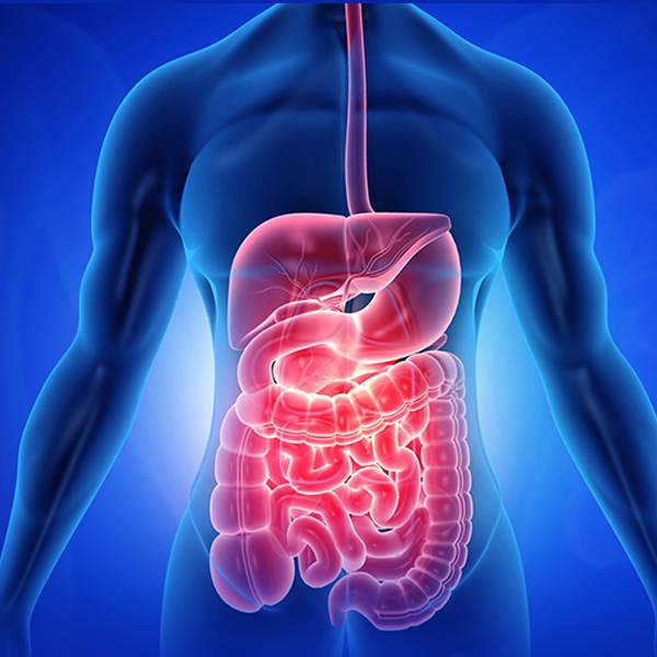 Polaris - Gastroenterology
